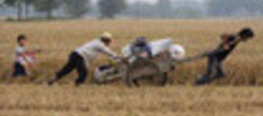 AGRICOLTURA:  REGOLE PIÙ SEVERE