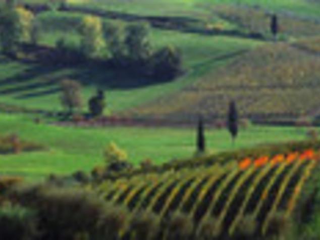 MADE IN ITALY: DALLA MONTAGNA I PRODOTTI TIPICI DI QUALITA'