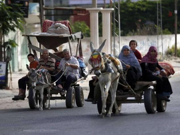 """Migliaia in fuga da nord Gaza Appello Papa: """"Cessare ostilita'"""