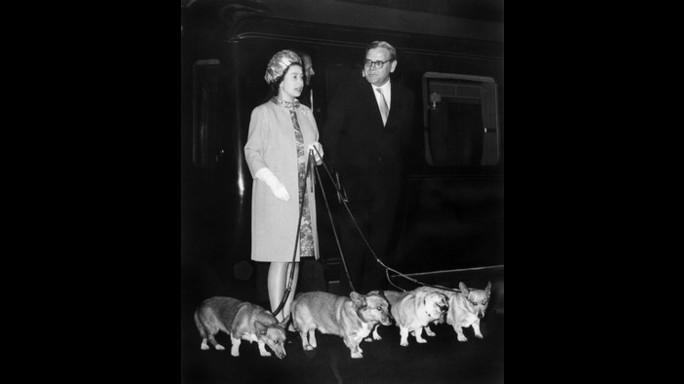 Per i cani della regina Elisabetta ciotole d'argento e protocollo