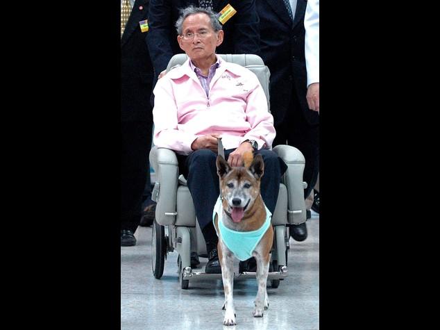 Thailandia: peggiora salute del re, premier incontra il principe