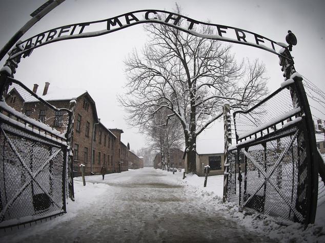 Oggi il Giorno della Memoria, 71 anni dopo l'orrore di Auschwitz
