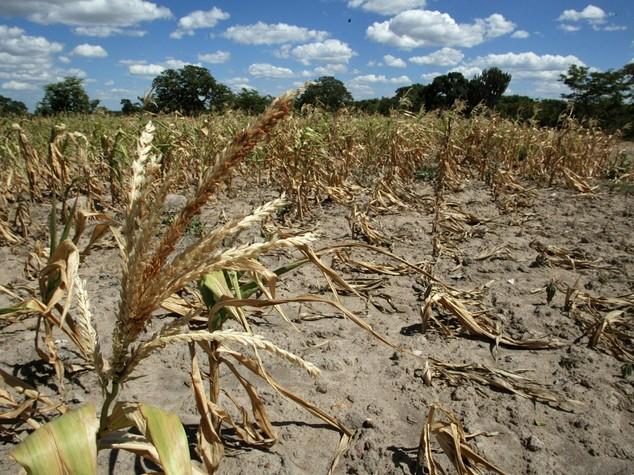 Zimbabwe: mulini 'cinesi' a energia solare per l'agricoltura