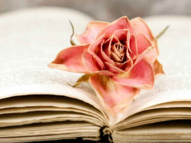 Da Coelho a De André, le 10 raccolte di poesie d'amore