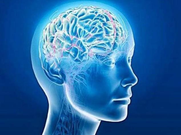 La curcuma nuovo alleato contro Alzheimer e ictus