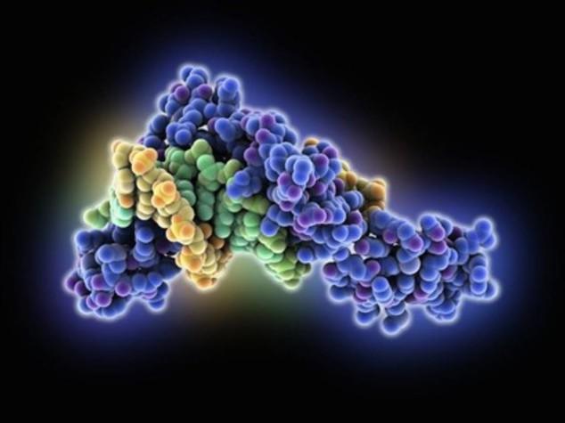 Tumori, nanoparticelle 'kamikaze' contro neoplasie