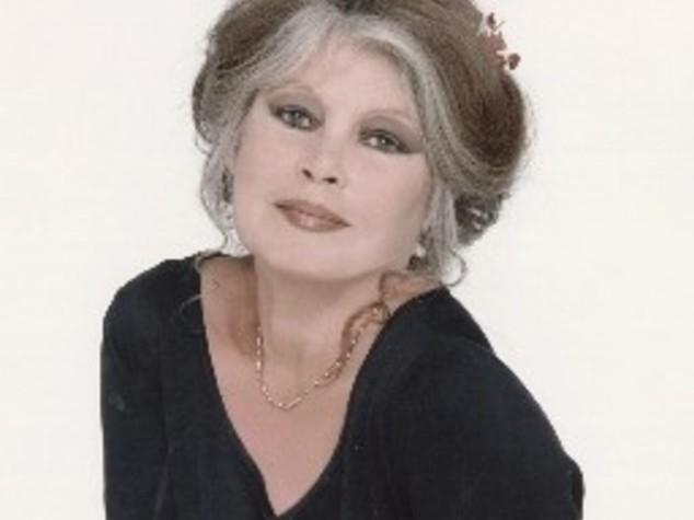 "Brigitte Bardot contro la Spagna, ""no a martirio levrieri"""