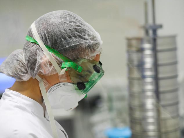 """Ricerca: """"spugna"""" carbonio capace di collegare tessuto nervoso"""