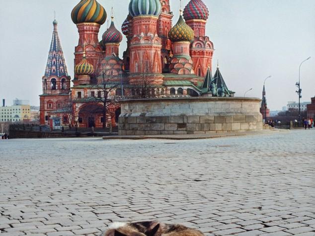 Russia: pil -0,6% nel secondo trimestre, meno peggio del primo