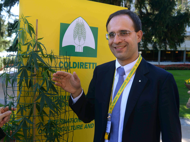 Svolta green consumi, da +20% bio a +50% gluten free