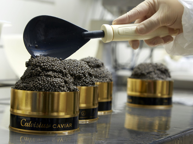 Forget the Caspian Sea, Italy is king of caviar