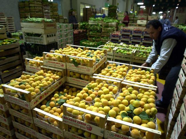 Inflazione: Coldiretti, con +3,1% frutta spinge uscita deflazione