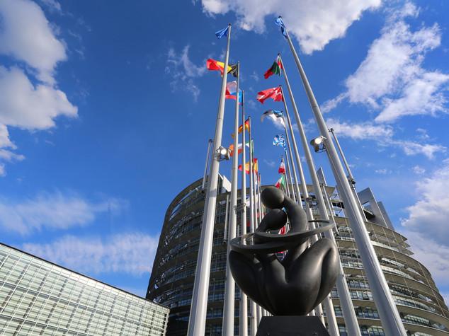 L'Euro, figlio prediletto e misconosciuto