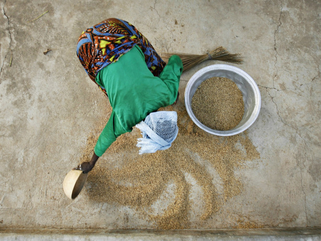 Prosegue il braccio di ferro tra teheran e ryad e i for Quotazione ferro oggi