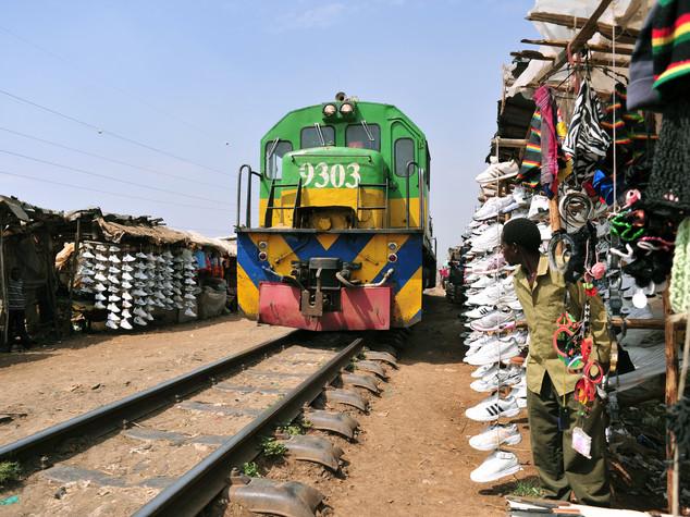 L'Africa alla cura del ferro