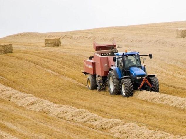 Agricoltura: Crea, consumo suolo e' costato ultimi 3 anni 400 mln