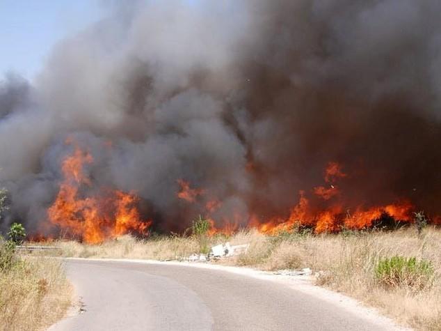 Incendi: ettari in fiamme a Terralba, arrestato l'incendiario