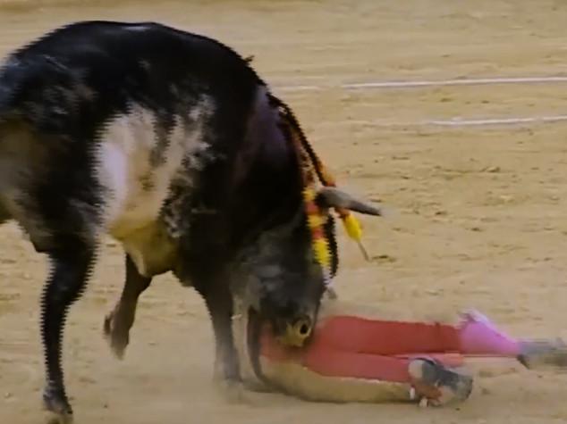 Muore incornato torero, primo in 31 anni in Spagna