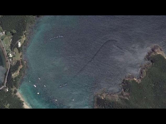 Google Earth scopre un mostro marino?