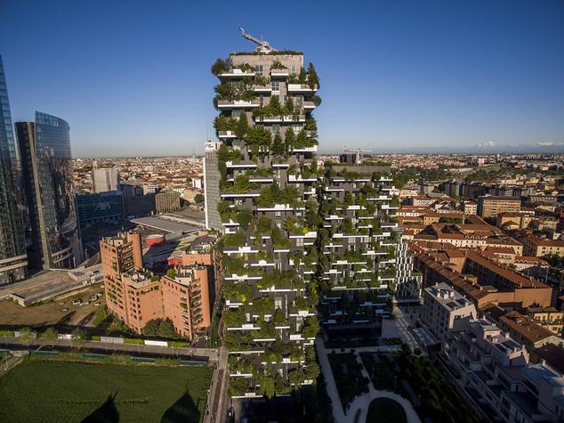 Sfida tra Milano e Seul per aggiudicarsi il congresso forestale mondiale -  FOTO