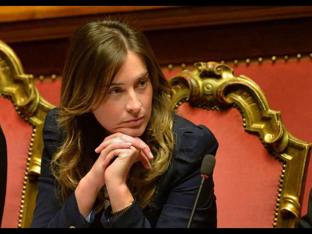 """Boschi: ddl riforme illiberale?  E' un'accusa """"allucinante"""""""