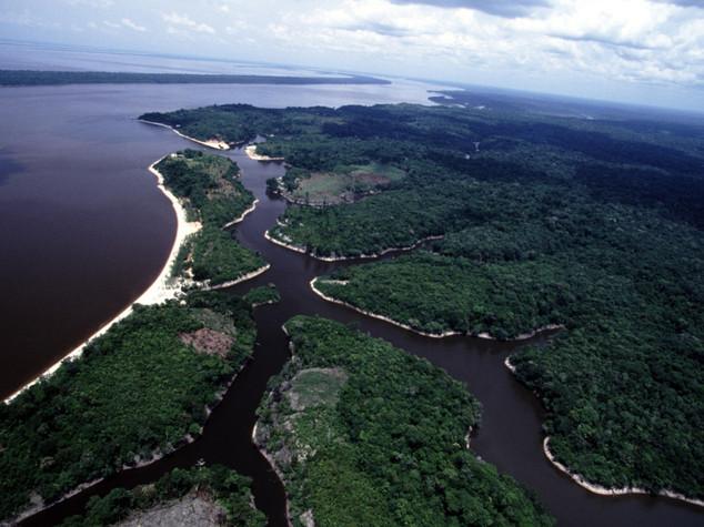 Clima: siccita' blocca capacita' assorbimento Co2 dell'Amazzonia