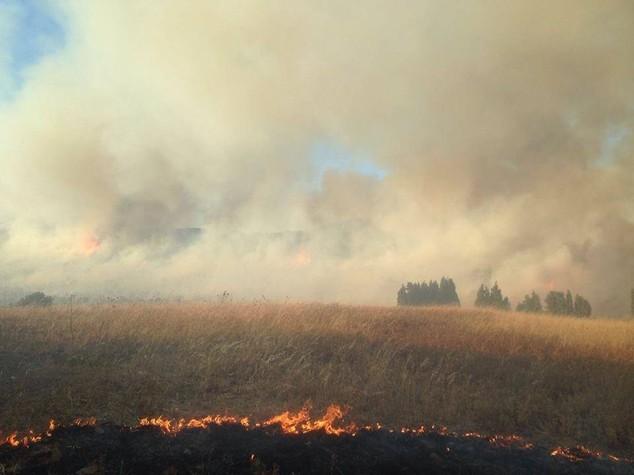Incendi in calo, -25% rispetto all'estate 2015