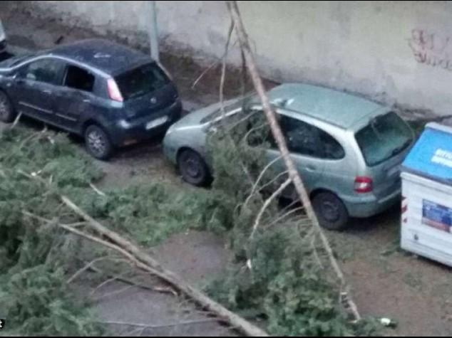 'Sciabola artica' flagella l'Italia Due morti a Lucca e Urbino