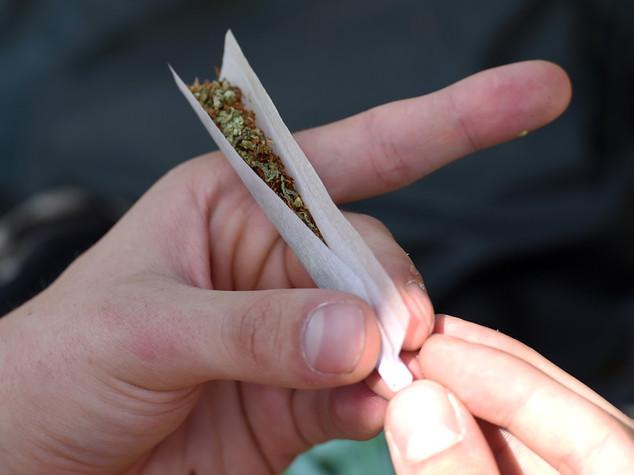 Cantone apre a legalizzazione cannabis, è scontro