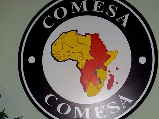 Ruanda: Kigali ospita vertice su investimenti area Comesa