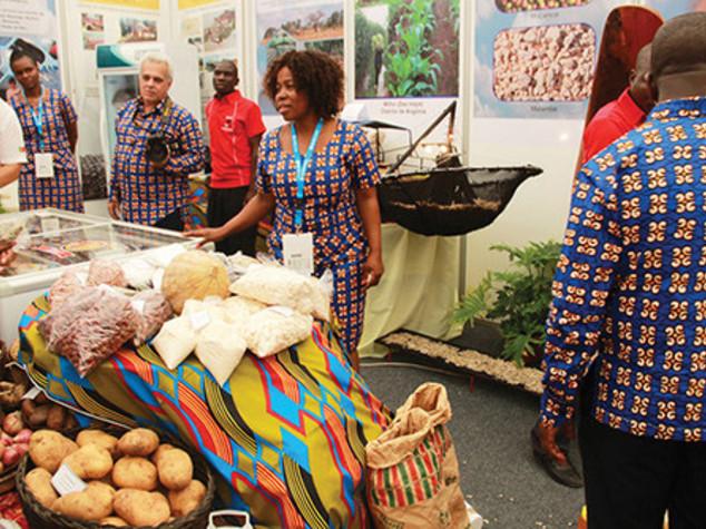 Italian companies take part in FACIM fair in Mozambique