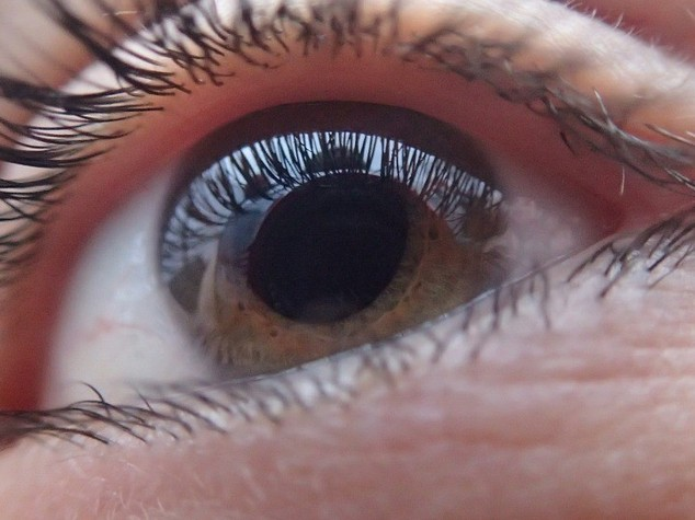 Salute: trapianto cornea, successo in bimbi con piu' di 5 anni