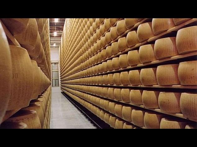 Per il Parmigiano la crisi e' peggio del terremoto, chiusa una stalla su 4