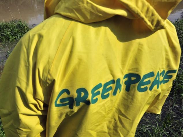 Russia: attaccato team antincendio di Greenpeace a Krasnodar
