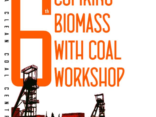 Energia: carbone e biomasse, a Carbonia workshop internazionale