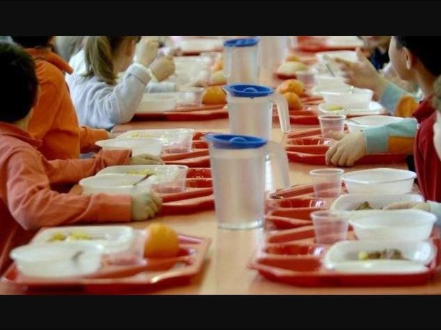 Panini con insetti alla scuola materna, scattano sequestri del Nas