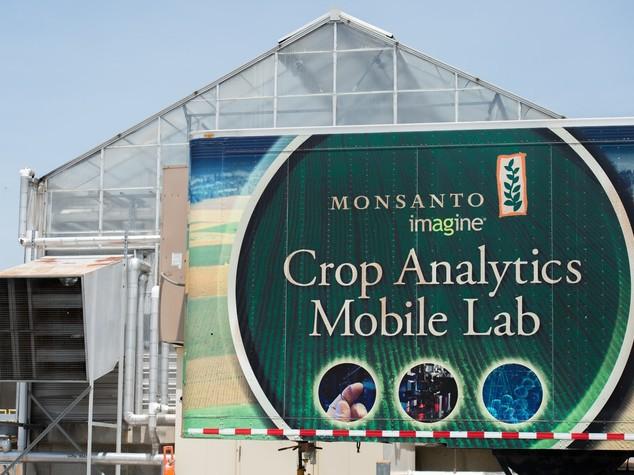 (Scheda) Monsanto: il colosso degli Ogm, tra progresso e proteste