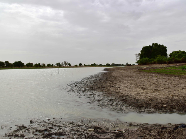 """Nigeria: Federal Government warns, """"River Niger is drying up"""""""