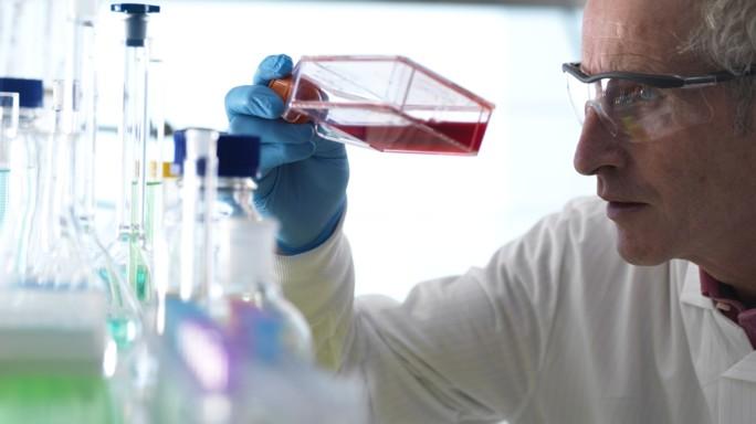 Telethon Napoli: scoperto il meccanismo biologico alla base della crescita tumorale