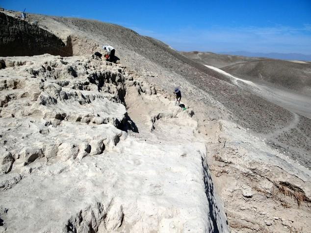 Archeologia: scoperta italiana aggiunge enigma a misteri di Nazca