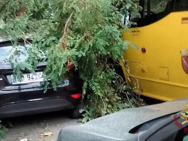 Maltempo: albero cade su scuolabus a Roma, 3 feriti tra cui una bimba