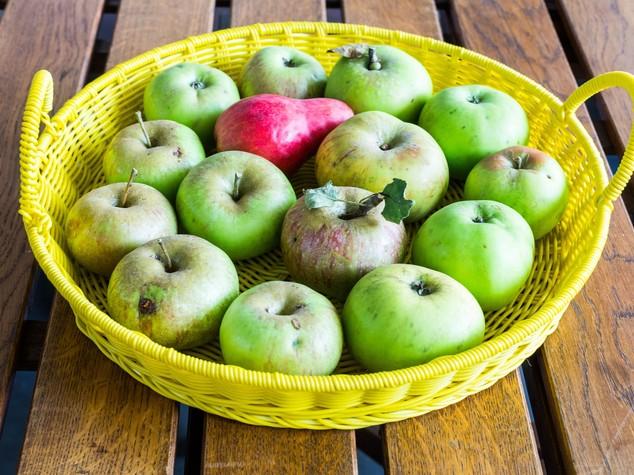 Ecco perché il succo di mela è anticancro