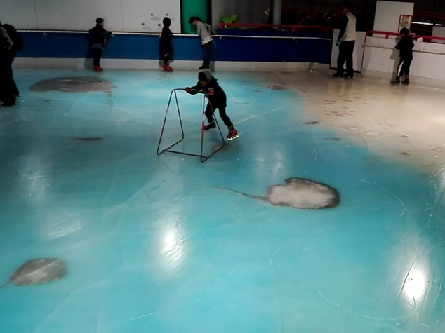 Giappone: chiude la pista di pattinaggio con i pesci incastrati nel ghiaccio