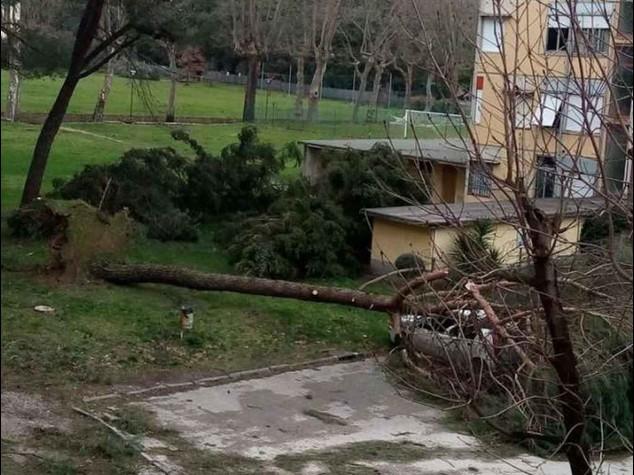 Maltempo, l'Italia nella bufera 'Sciabolata' artica fa 2 morti