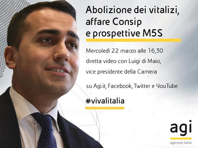 """Alle 16,30 Di Maio in diretta web a """"Viva l'Italia"""""""