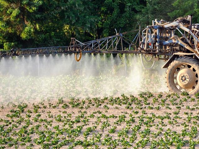La guerra ai pesticidi e il glifosato: quello che sappiamo