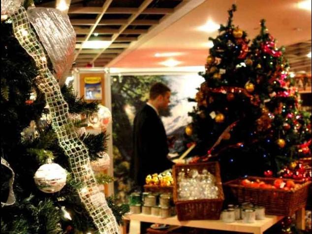 Natale: la crisi 'accorcia' l'albero di mezzo metro