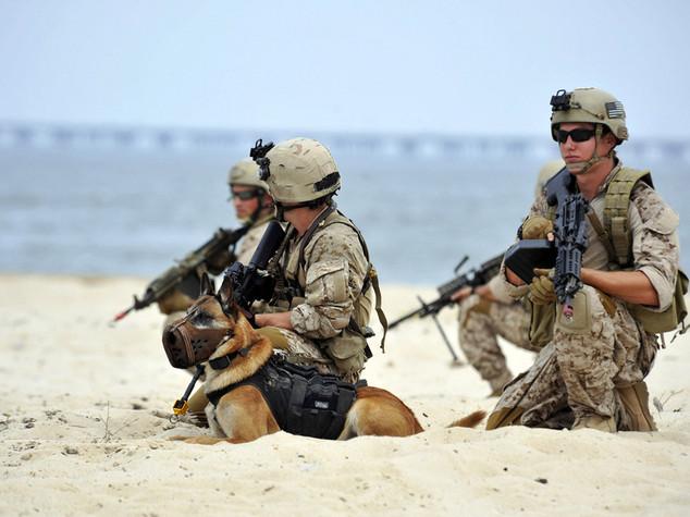 La droga sta distruggendo il mito dei Navy Seal