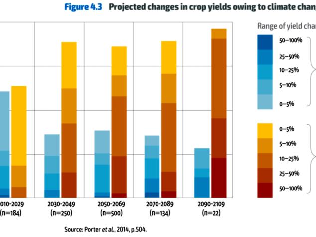 Il futuro della sovranità alimentare in 4 grafici