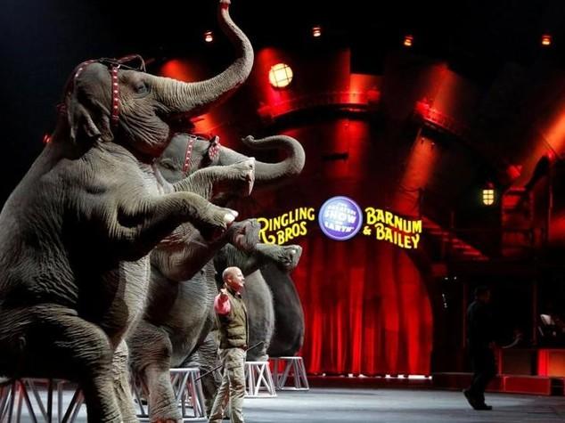 Il più grande spettacolo del mondo è finito: chiude il Circo Barnum